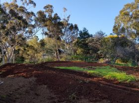 Siteworks & driveway taking shape